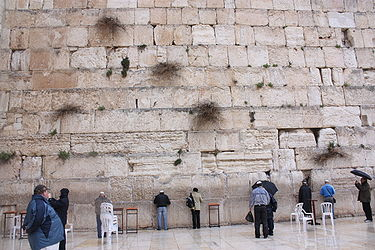 Western Wall in the rain 2010 8.jpg