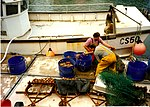 File:Weymouth - Sorting the Catch - geograph.org.uk - 711660.jpg