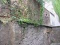 Wien - Tandelmarktgasse 8 Ghettomauer 05.JPG