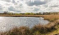 Wijnjeterper Schar, Natura 2000-gebied provincie Friesland 32.jpg