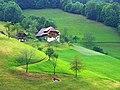 Wildgutach - panoramio.jpg