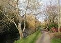 Wimborne, riverside walk - geograph.org.uk - 1617579.jpg