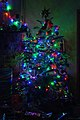 Wraxall 2011 MMB 59 Christmas tree.jpg