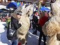 Wrestling the goat monsters - P1020036 (100758857).jpg
