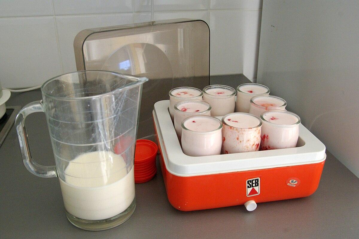 Yaourti re wiktionnaire - Fabrication de yaourt maison sans yaourtiere ...