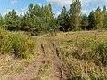 Yaroslavsky District, Yaroslavl Oblast, Russia - panoramio (71).jpg