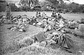 Yom Kippur War. Force Naftul. VIII.jpg