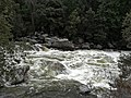 Yosemite Nationalpark Merced River IMG 20180410 165829.jpg