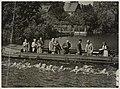 Zwemwedstrijd in de Van Merlenvaart, georganiseerd door HPC. Op de foto de start van de 1000 meter schoolslag heren.JPG
