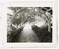 """Belmont,"" Gari Melchers house, 224 Washington Street, Fredericksburg, Virginia. Arbor at the Long Walk LCCN2008680009.jpg"