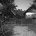 """""""Lesa"""" z """"lesco"""", Brlog, pri Martjačevih 1956.jpg"""