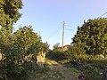 Çukurpınar, 39100 Çukurpınar-Kırklareli Merkez-Kırklareli, Turkey - panoramio.jpg