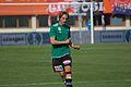 ÖFB-Cupfinale 2012 Carril 01.jpg