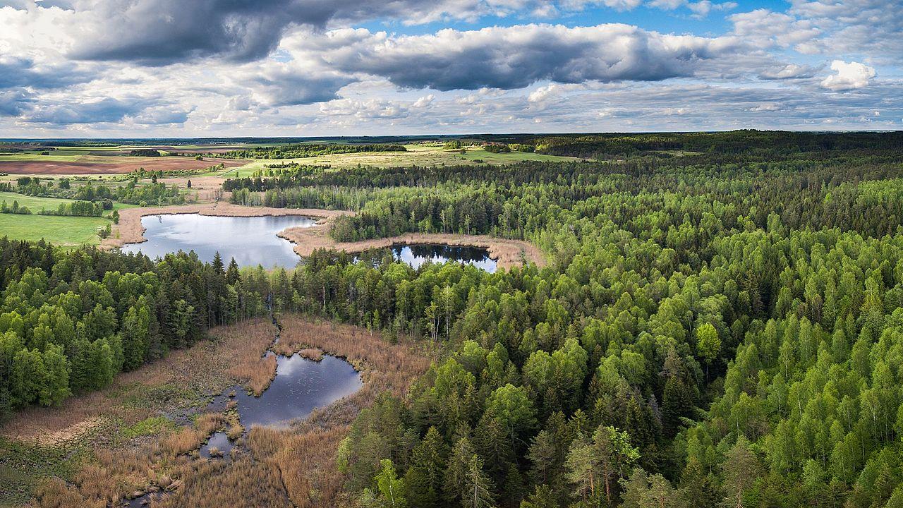 Dataran rata khas Lithuania dengan danau, rawa, dan hutan.