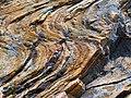 Αισθητικό δάσος Υμηττού - Mount Hymettus Aesthetic Forest 6.jpg