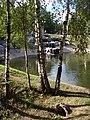 Березки - panoramio - karel291.jpg