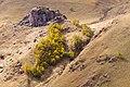 Горные склоны в урочище Джилысу, сентябрь 2014. 01.jpg
