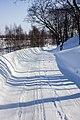 Дорога от монастыря (16.03.2012) - panoramio.jpg
