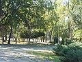 Запоріжжя, Парк залізничної станції Запоріжжя-2 03.jpg