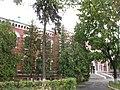 Здание первой мужской гимназии.JPG