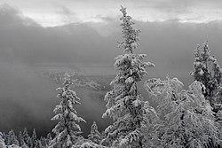 Зимняя прогулка..JPG