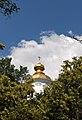 Київ - Видубицький монастир. Михайлівський собор DSC 4481.JPG