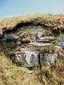 Кременецькі гори (національний парк).jpg