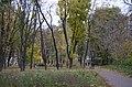 Лісове урочище Крістерів, Подільський район вул. Осиповського, 2-а.jpg