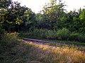 Направо - в село Албина (3км), налево - в с. Сэрата Галбенэ (8км) - panoramio.jpg
