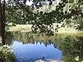 Озеро - panoramio (38).jpg