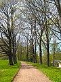 Ораниенбаум, Верхний парк, Английская аллея01.jpg