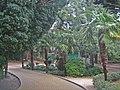 Парк.Симеиз - panoramio.jpg