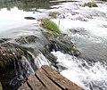 Парк природе Ријека Уна 93.jpg