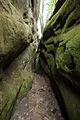 Печерний комплекс в Бубнище 15.jpg