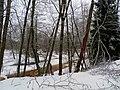 Река Виесите Viesītes upe ziemā - panoramio.jpg