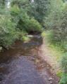 Река Нюксенка.png