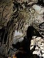 Скални образувания - пещерата Леденика.JPG