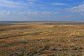 У села Шкуновка - panoramio.jpg