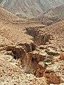 وادي محرس - مجرى الوادي.jpg