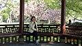 杭州 西湖 苏堤 - panoramio (1).jpg