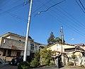 松の湯とルバーブ - panoramio.jpg