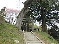 染殿神社 Somedono Shrine - panoramio.jpg