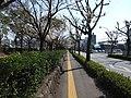 桜馬場付近 - panoramio.jpg