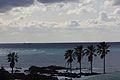 白浜フラワーパーク側道 - panoramio.jpg