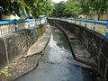 01605jfBarangays Malinao San Nicolas Tomas Cruz Avenues Pasig Cityfvf 12.jpg