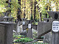 041012 Orthodox cemetery in Wola - 37.jpg