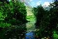 150510 172140 Giardino di Ninfa.jpg