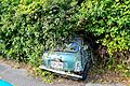 1971 Austin Mini (16798043048).jpg