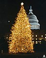 1992 U.S. Capitol Christmas Tree (31432738050).jpg