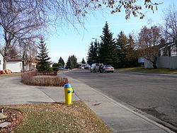 Residential street in Ekota - Fall 2008